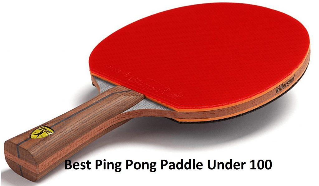 Best ping pong paddle under 100 2021