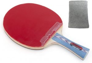 Best Table Tennis Paddle DHS hurricane