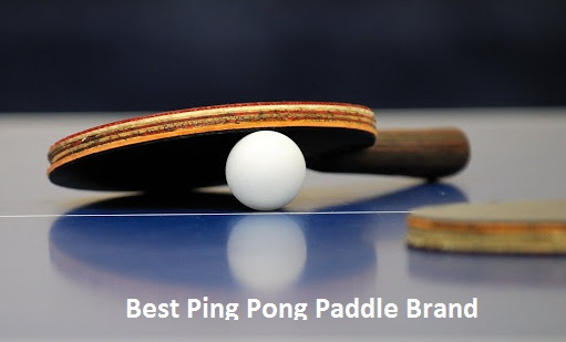 best ping pong paddle brand 2021