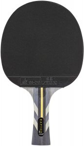 Best Table Tennis Paddle For Spin STIGA raptor